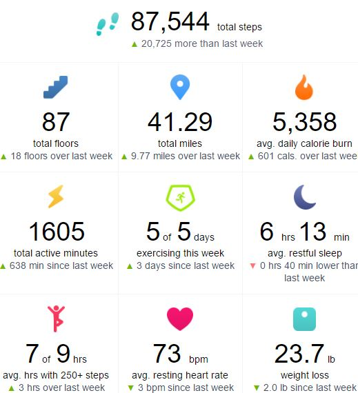 06-13-17 Fitbit Data