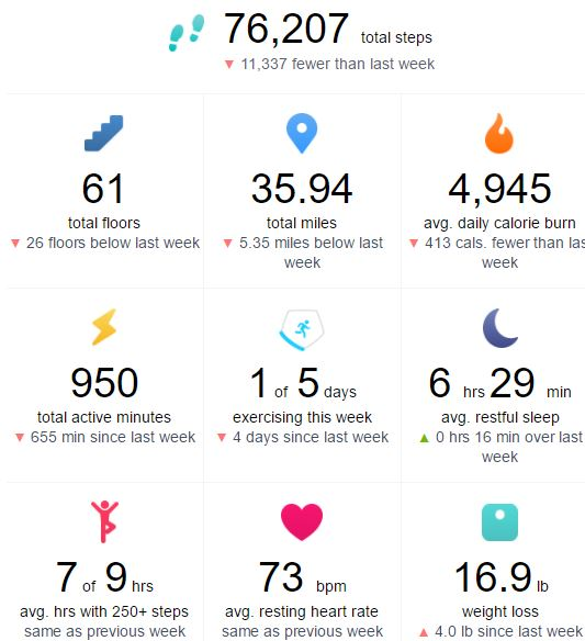 06-20-17 Fitbit Data